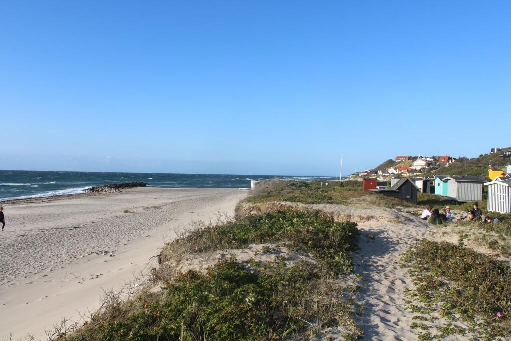 Hygge på forstranden med klitter i Tisvildeleje Strand ud til Kattegat. Foto i retning øst m