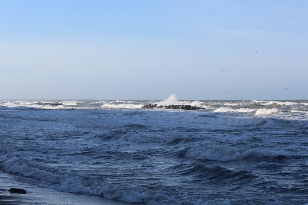 Hyllingebjerg Strand. Bøgebrydere af store granitsten parallel med kysten. Foto den 8. november 2015 kl. 11-12 af erik K Abrahamsen