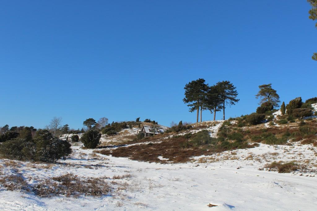 Tibirke Hills. Photo in direction north 5. february 2015 by Erik K Abrahamsen.