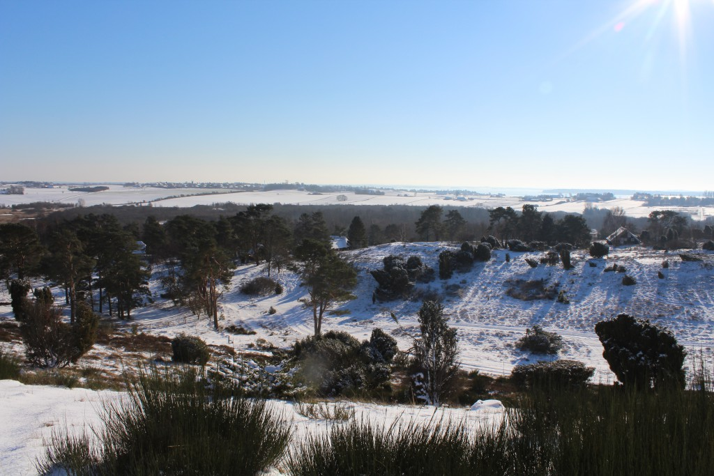 Tibirke Hills. View in direction south from hill - 49 meter above sea level. Photo 5, february 2015 by Erik K Abrahamsen
