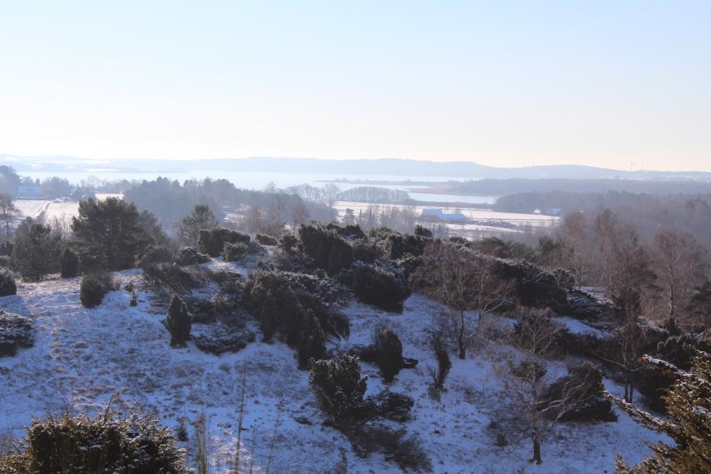 Tibirke Hill. View in direcrio southwest to Arrsoe lake. Photo 5. february by erik K Abrahamsen.