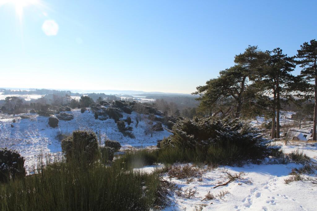 Tibirke Hills. View in direction west to Arresoe Lake. Photo 5. february 2015 by Erik K Abrahamsen