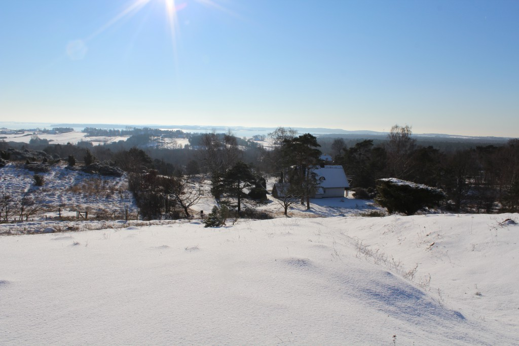 """Tibirke Hills. Viewpoint """"Udsigten"""". Panorama view in direction southeast to Arrsoe Lake. Photo 5. february 2015 by Erik K Abrahamsen."""