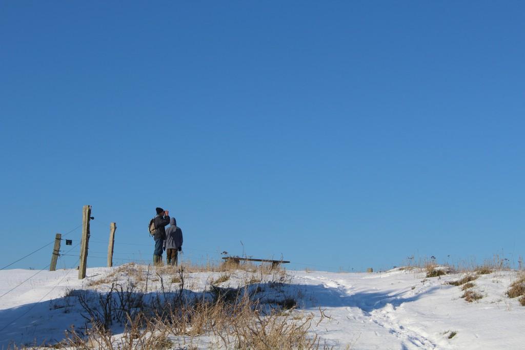 "Tibirke Hills. Viewpoint ""Udsigten"" - 57 meter above sea level. Phot in direction north 5. february 2015 by Erik K Abrahamsen."