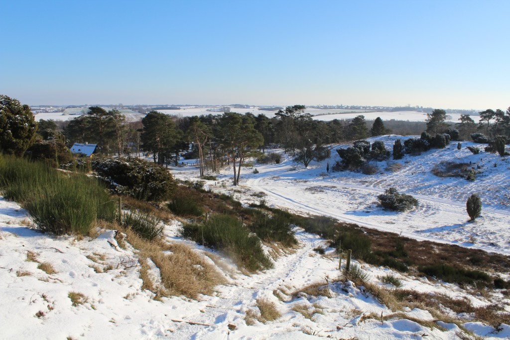 Tibirke Hills. The public path which leads down to main road Baekkebrovej. Photo 5. februar 2015 by Erik K Abrahamsen