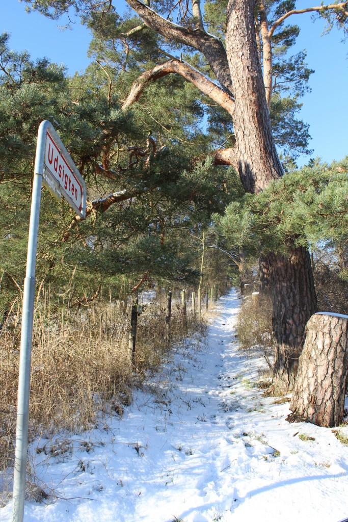 """Entrace to public path fro Baekkebrovej to Viewpoint """"Udsigten"""" - 57 meter above sea level."""