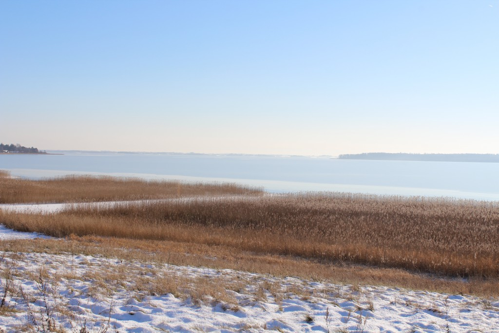 Arresoe Lake, North Sealand, Denmark. The lake is 17 km2 and 4-6 meter deep. Phot in direction southwest 5. february 2015 by Erik K Abrahamsen