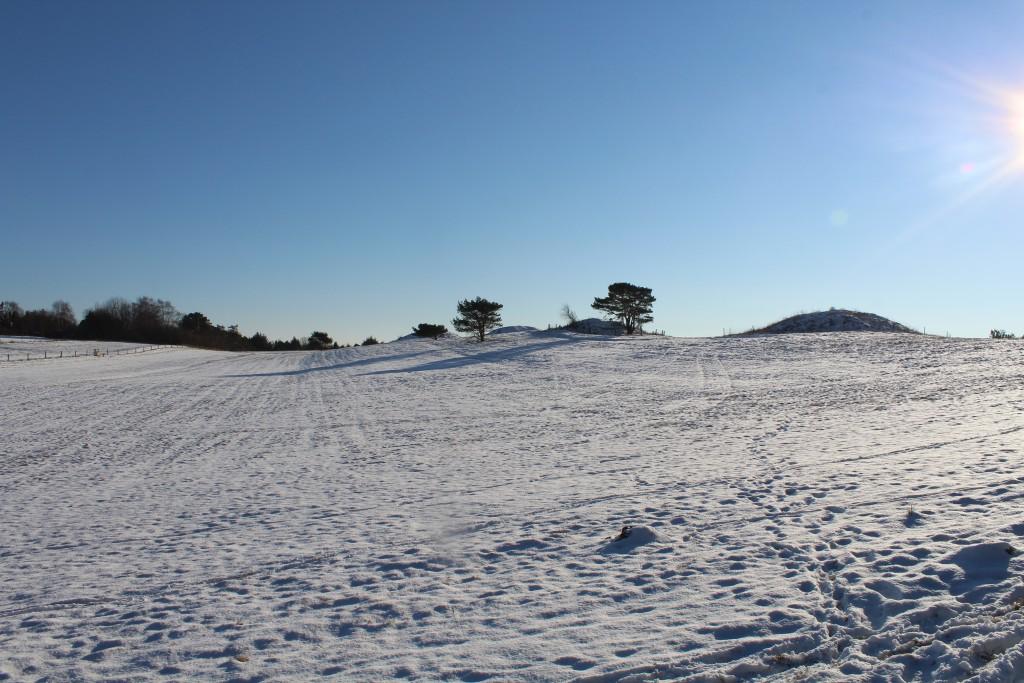 """Seven Hights """"Syv Høje - seven burial mounds fra Danish Bronze Age 1500 B"""
