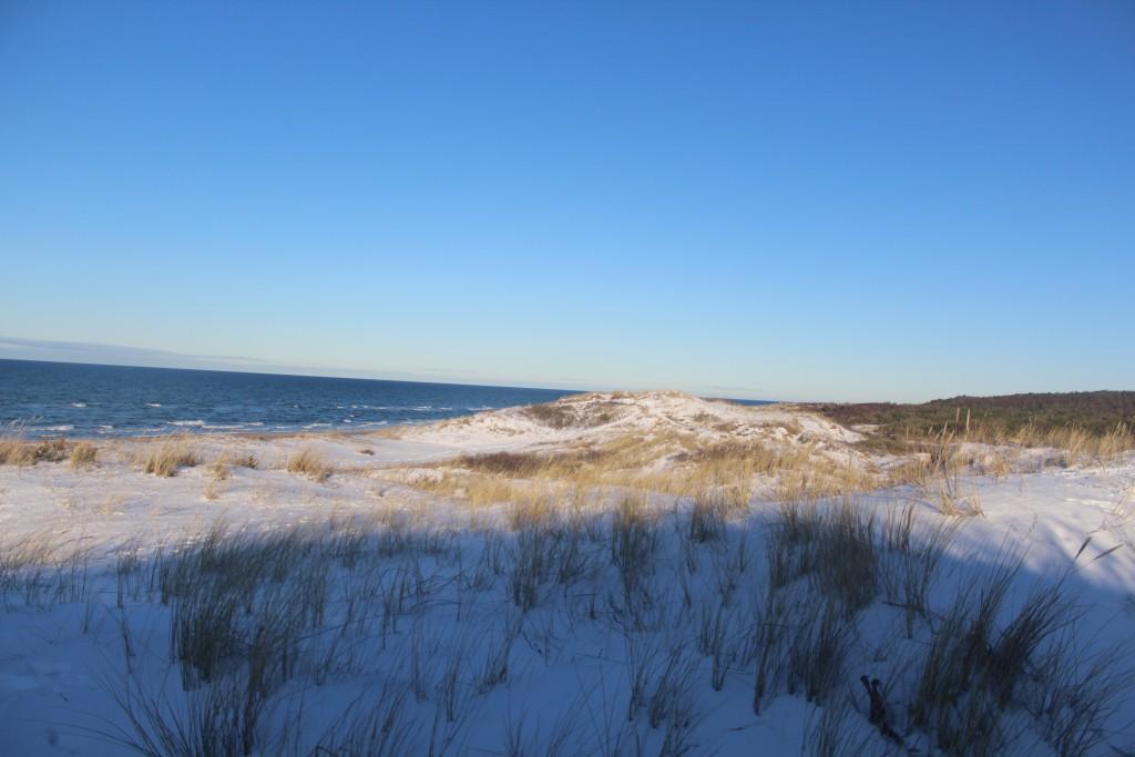 """Kattegat Coast at """"Troldeskove"""" Beach in Tisvilde hegn"""