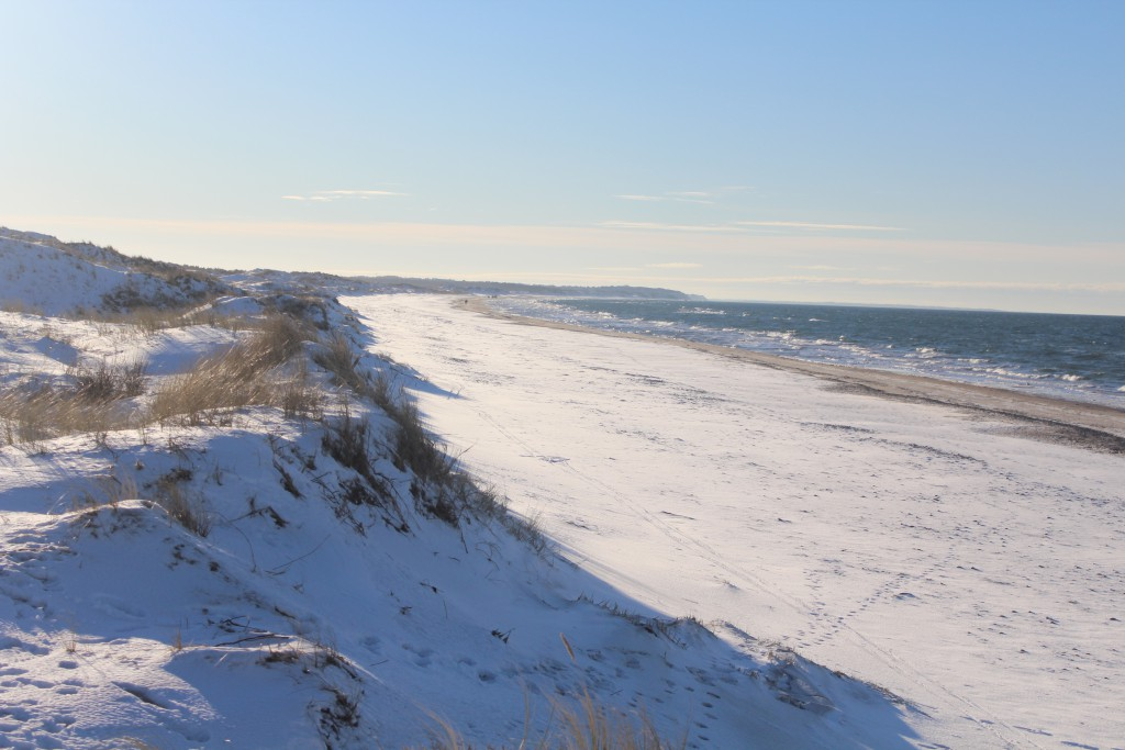 """Kattegat Coast at """"Troldeskoven"""" Beach, Tisvilde Hegn. View in direction west to Liseleje in horizon. Photo about 3 pm the 21. january 2016 by erik K Abrahamsen."""