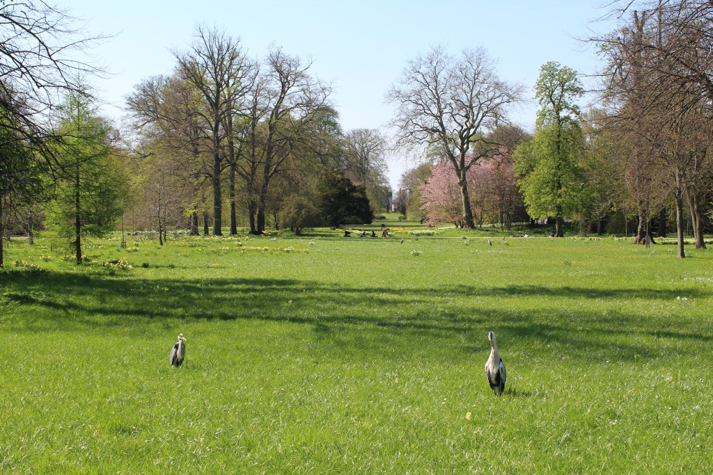 Frederiksberg Garden. View through symmetric view lines in direction west to at the end of the view line
