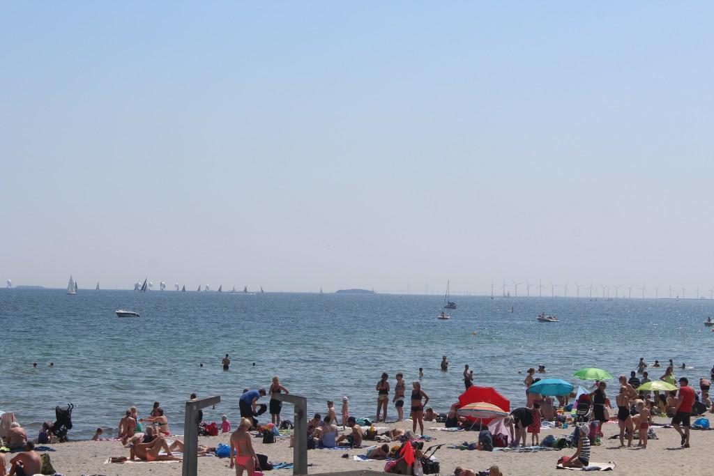 View to Øresund on Bellevue Beach. Photo in direction east 4. june 2016