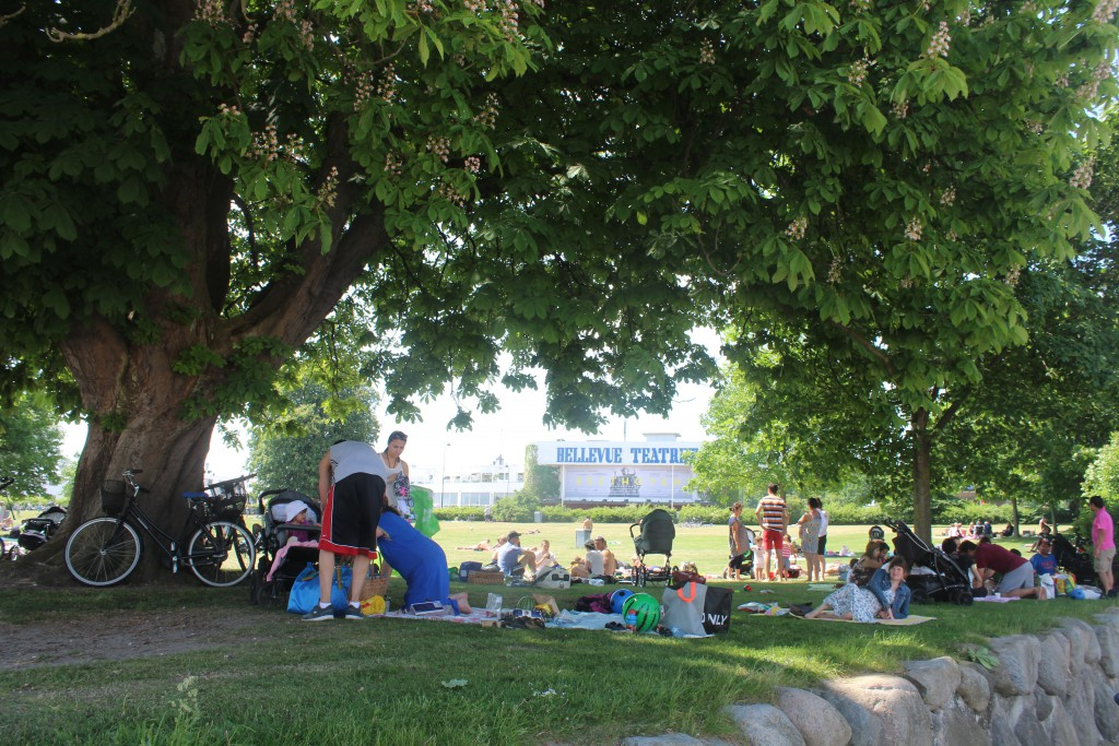 Relaxatin and picnic under the tree on Bellevue Beach. Photo in direction Bellevue Theater by Arne Jacobseb. Ph