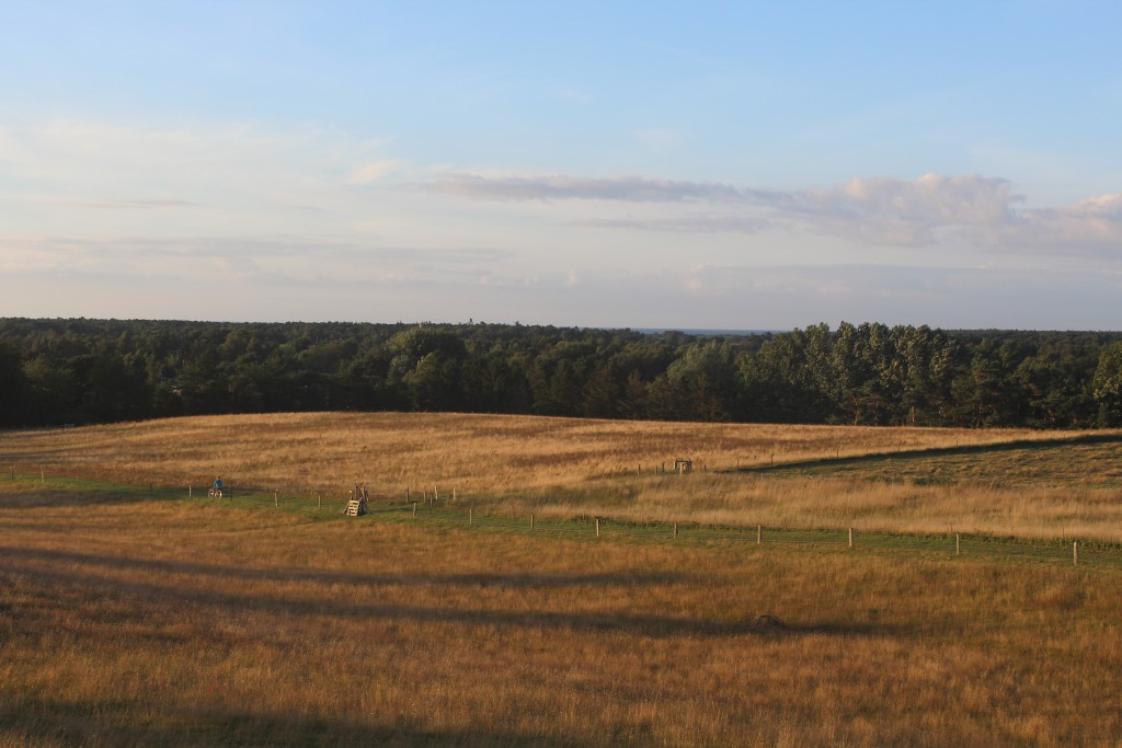 Seven High - Syv Høje, Melby. View in direction east to Kattegat Sea from burial mound. Photo 27. july 2016 by