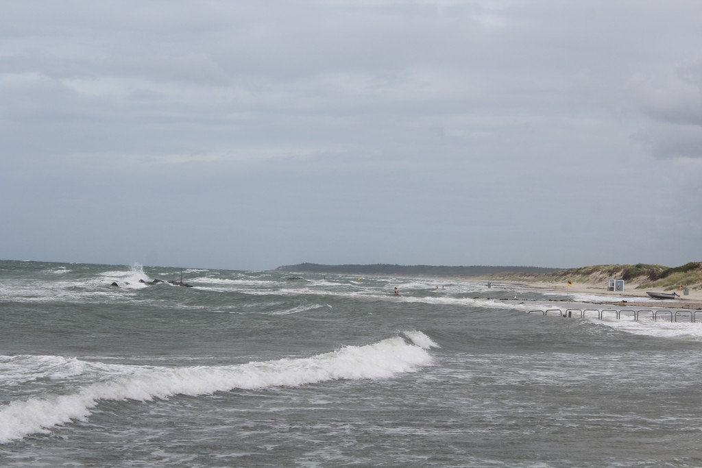 Liseleje beach, NorthSealand. View in direct east to Tisvilde Hegn. Photo 8. august 2016 by Erik K Abrahamsen.