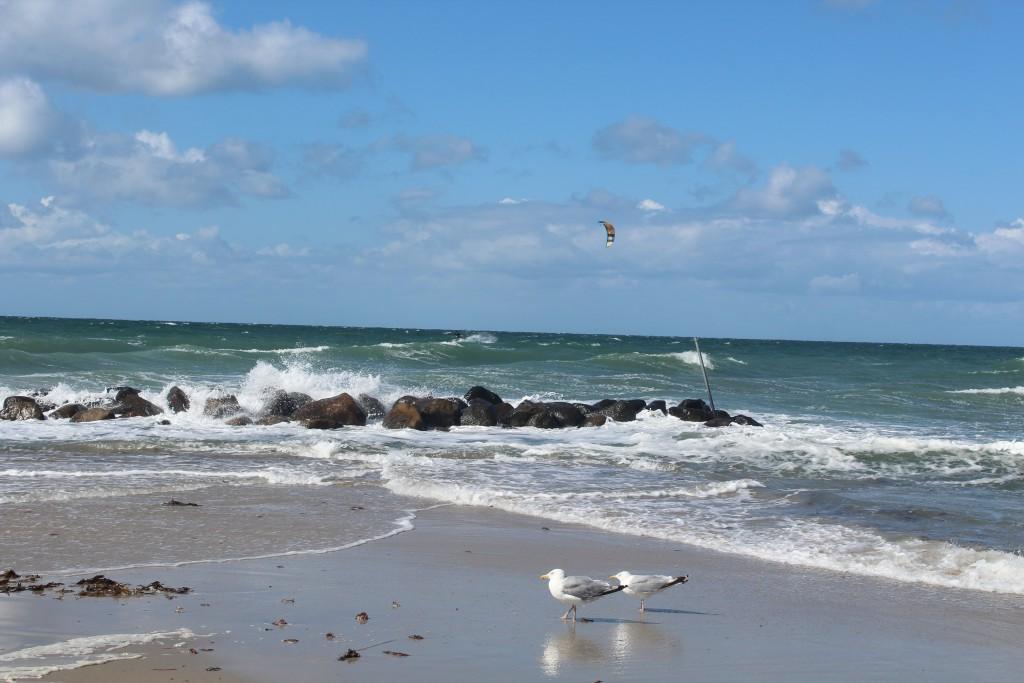 Liseleje beach. View in direction north to Kattegat Sea. Photo 9. august 2016 by Erik K Abrahamsen.