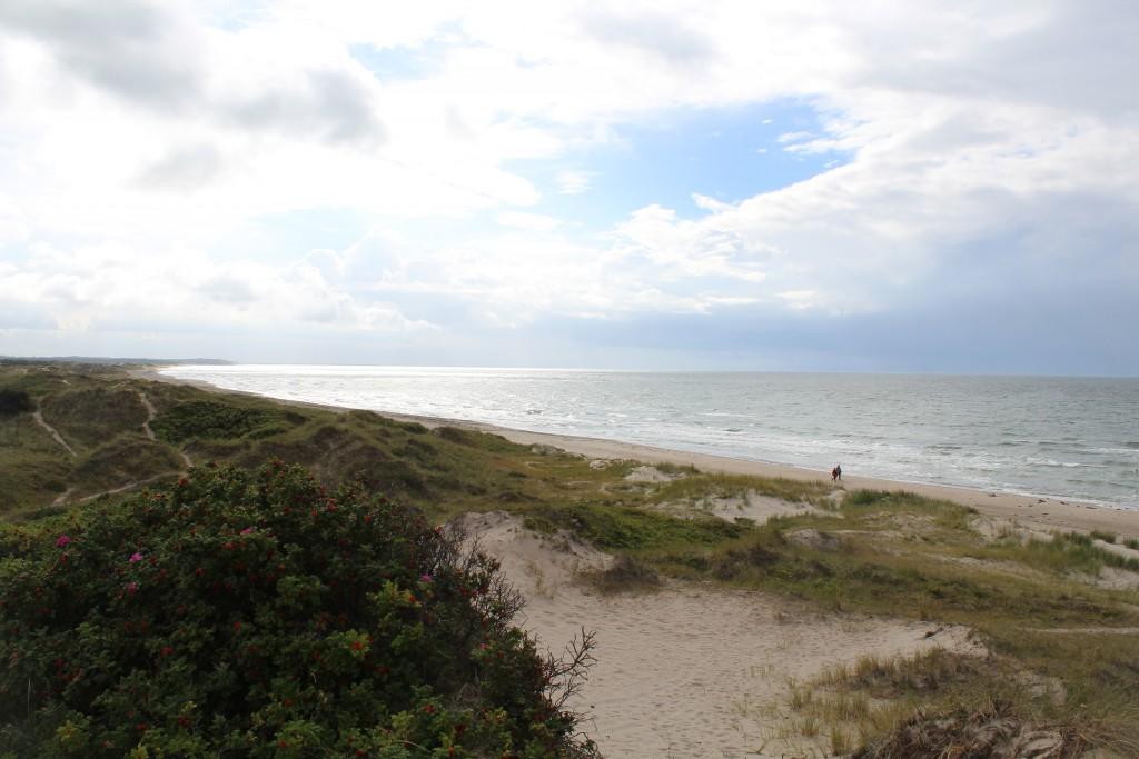 "Tisvilde Hegn at Kattegat Sea in North Sealand Denmark. ""Troldeskovens Beach"""