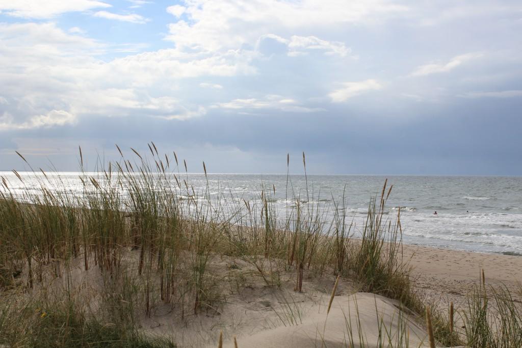 Tisvilde heg. Kattegat Sea. Vew in direction north/west