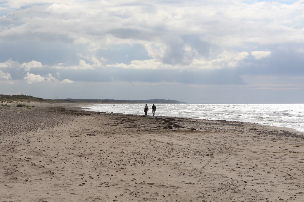 Tisvilde hegn at Cattegat Coast, North sealand. My two friends i