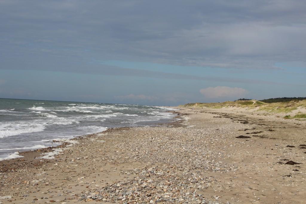 Tisvilde hegn. View in direction west to Jyde Beach, Troldeskoven Beach and Tisvi