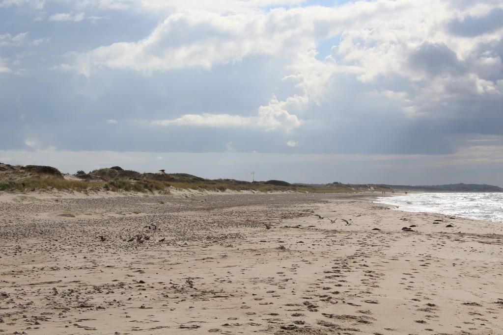 Tisvilde hegn at Kattegat Coast. Stængehus beach. Photo in directio