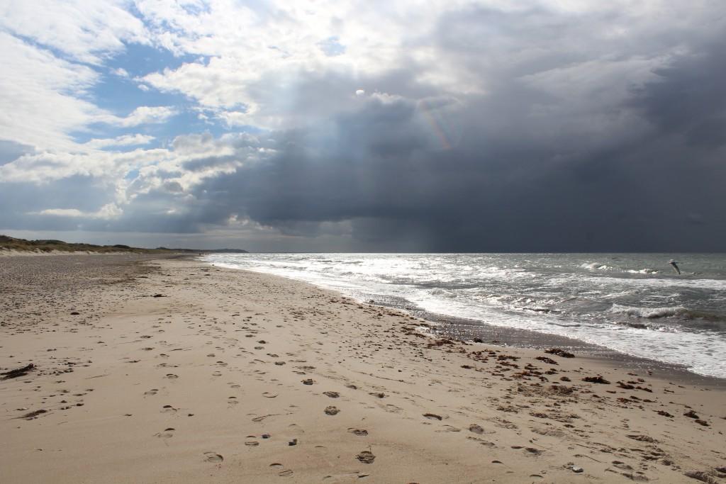 Tisvilde Hegn at Kattegat Coast. Stæmhgehus beach. Phoot 4.45 PM 14