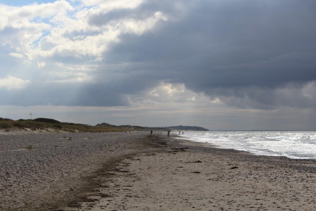 Tisvilde Hegh at Cattegat Coast, North Sealand, Denmark. Photo in d
