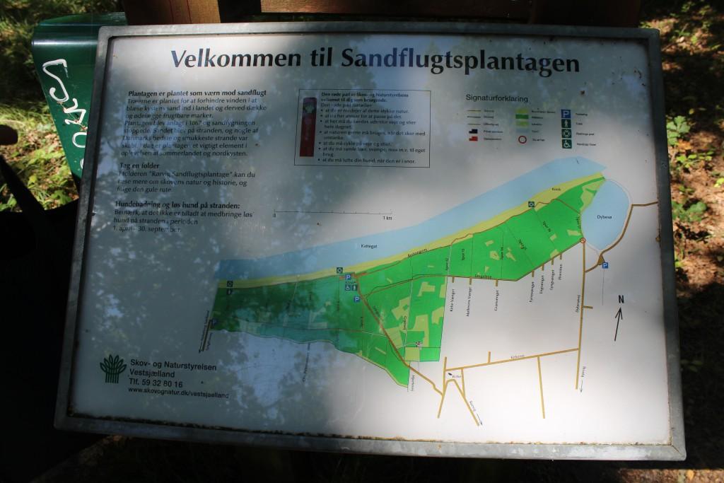 Plate of Rørvig Plantation. Photo 17. august 2016 by Erik K Abrahamsen.