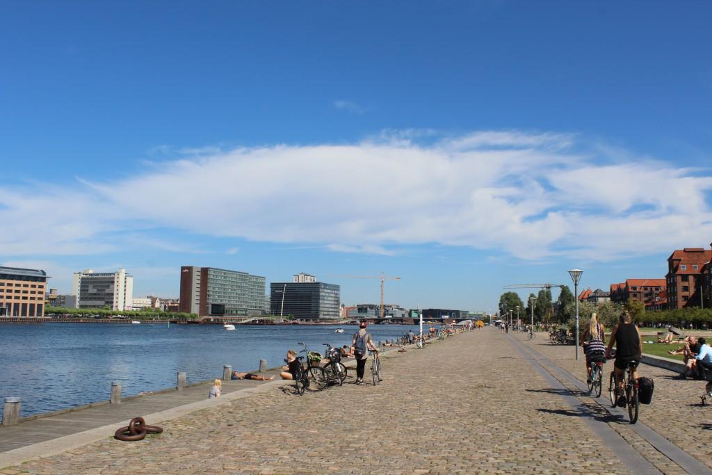 "Island Brygge on island Amager. Vue in direction east to Copenhagen Inner Harbour and ""Langebro"" bridge: Phoot 25. august 2016 by erik k abrahamsen."