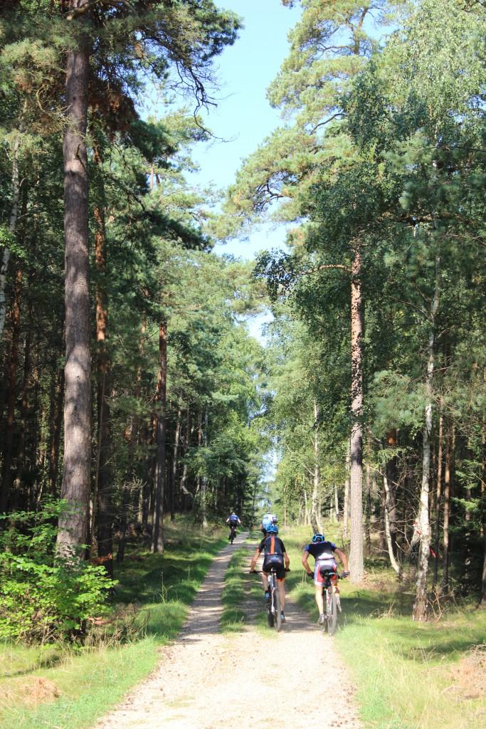 Hotcup 2016. Mountainbike rytter på vej ad Skovkærsvej i retning øst. Foto 10. september 2016 af Erik K Abrahamsen.