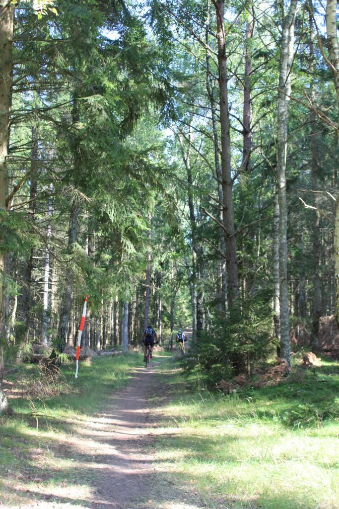 2 rytere forsvinder ind på smal skovsti fra Skovkærsvej i retning mod syd. Foto den 10. september 2016 af Erik K Abrahamsen.