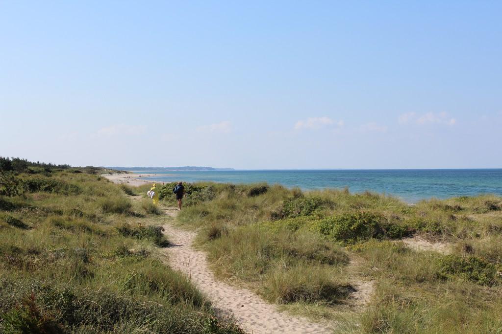 Tisvilde Strand ved Strandvejen i Tisvilde hegn. Foto i retning mod vest mod Liseleje , Hald skrænter og Sjællands