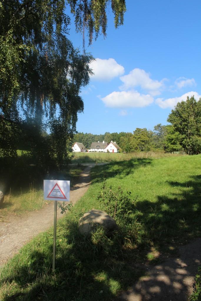 """Skit ved Absalons Slotsruin i Tisvilde hegn. Foto i retning mod skovriderhuset """"S"""