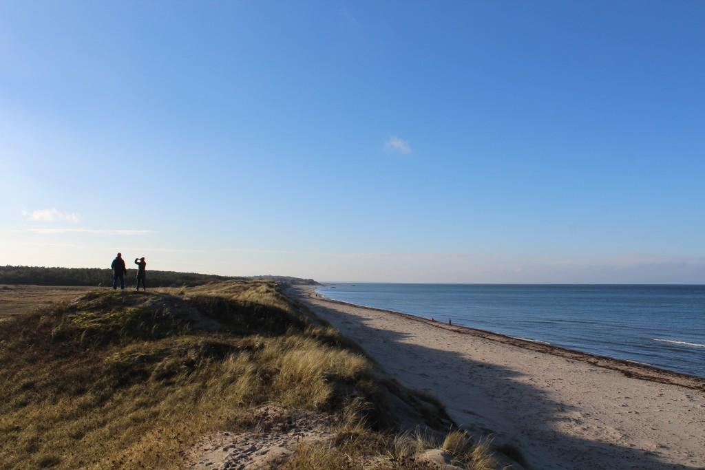 Melby Overdrev - udsugt mod vest ud over Kattegat mod Liseleje og Sjællands O