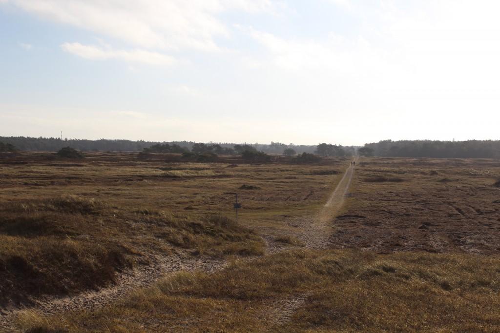 Melby Overdrev. Udsigt mod syd fra klitterne ud til Kattegats Kyst. Foto den 19. november 2016 af erik K An´btaghamsen.
