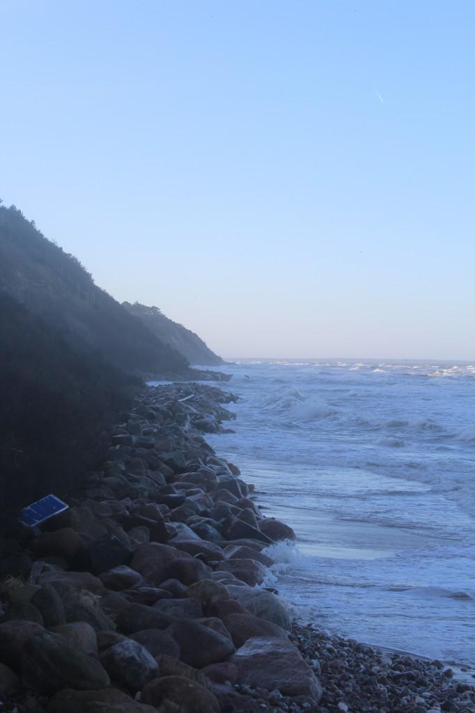 Hyllingebjerg Strand med skræntfods ky