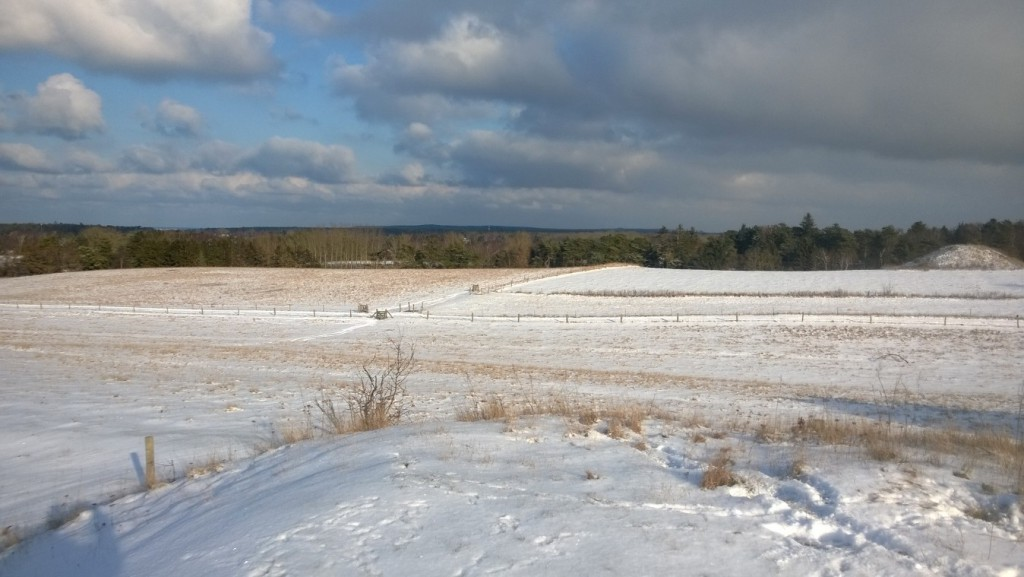 View from burial mound in direction north/east to Asserbo village,Kattegat sea and Tisvilde Hegn (forest) in horizon.
