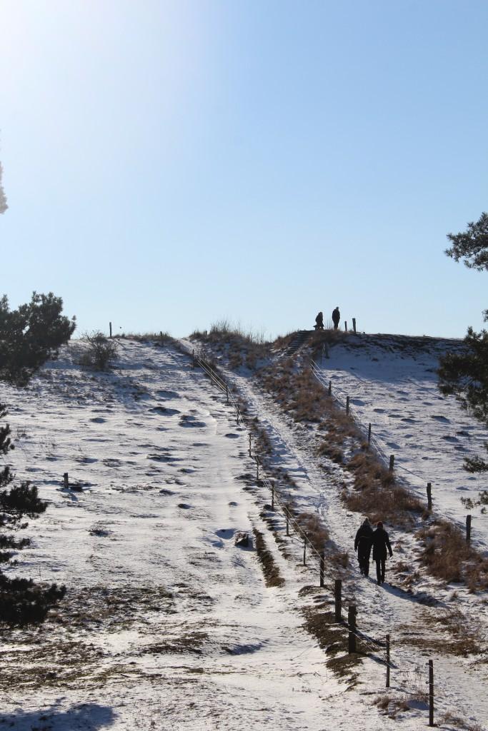 """Tibirke Bakker. Vue mod """"Udsigen"""", 57 m o.h. med lille slædebakke på den offentlige sti. Foto i retning vest den 12. februar 20+17 af Erik K Abrahamsen."""