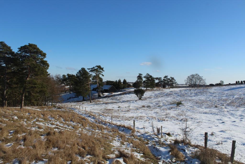 Tibirke Bakker. Fritidshus mellem morænebakker. Foto mod syd den 12. februar 2107 af Erik K Abrahamsen.