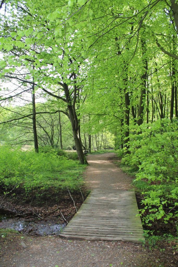 Marselisborg Skove