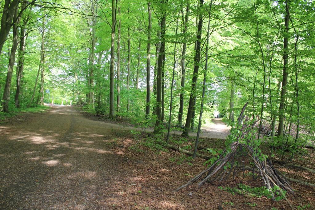 Marselisborgskovene hvor de ender