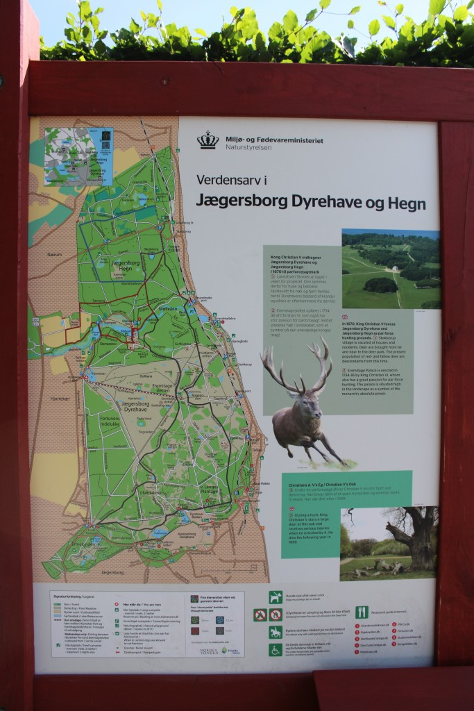 Planche over Jægersborg Dyrehave.
