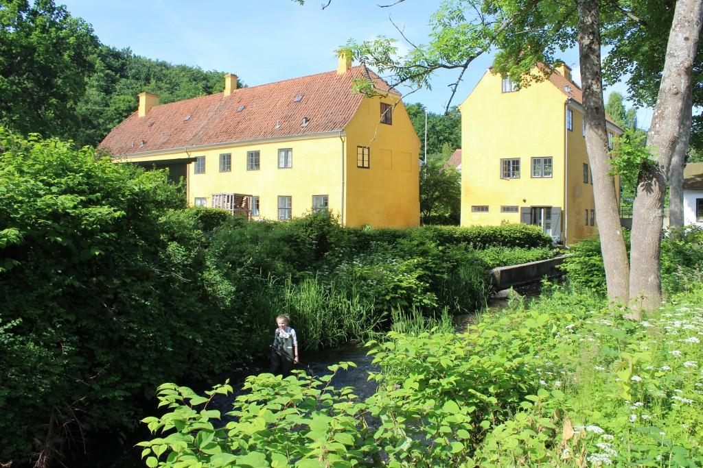 Mølleåen kun 50 meter fea Raadvad Naturskole.