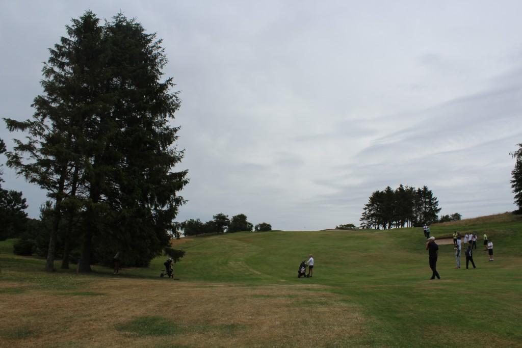 Indspil til green. Natacha driving slag lander bolden til venstre i semirough uder et grantræ. Foto den 10 julu 2017 af Erik K Abrahamsen