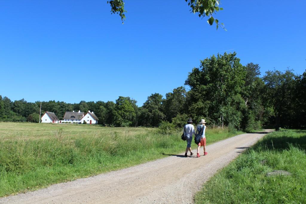 Slotsporthus og vej der fører frem til indgangen til Tis