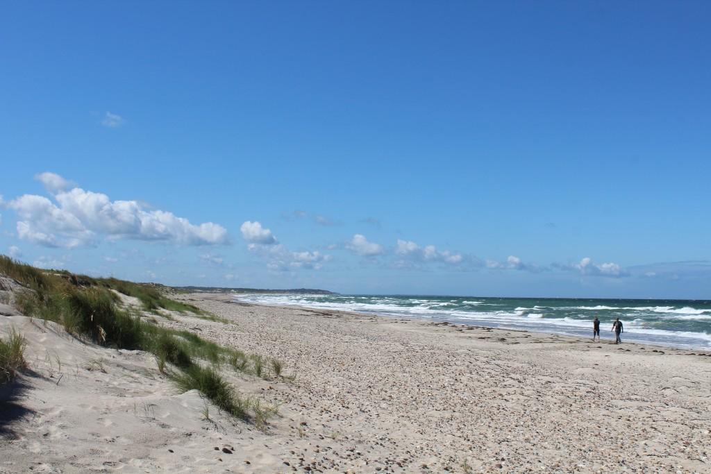 Gåture langs Kattegats kystlinie. Foto i retning vest mos Liseleje den 17.7.107 af Erik K Abrahamsen.