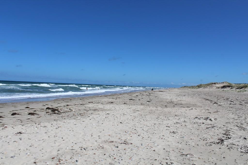 Badning i Kattegats høje bølger.