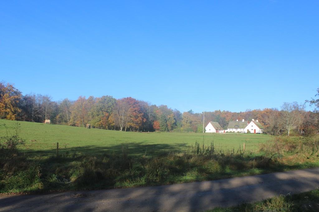 Slotsport Hus ved indgangen til Tisvilde hagn og som nabo til Asserbo Slotsruin. Foto den 7. november kl.10.30 af Erik K Abrahamsen.