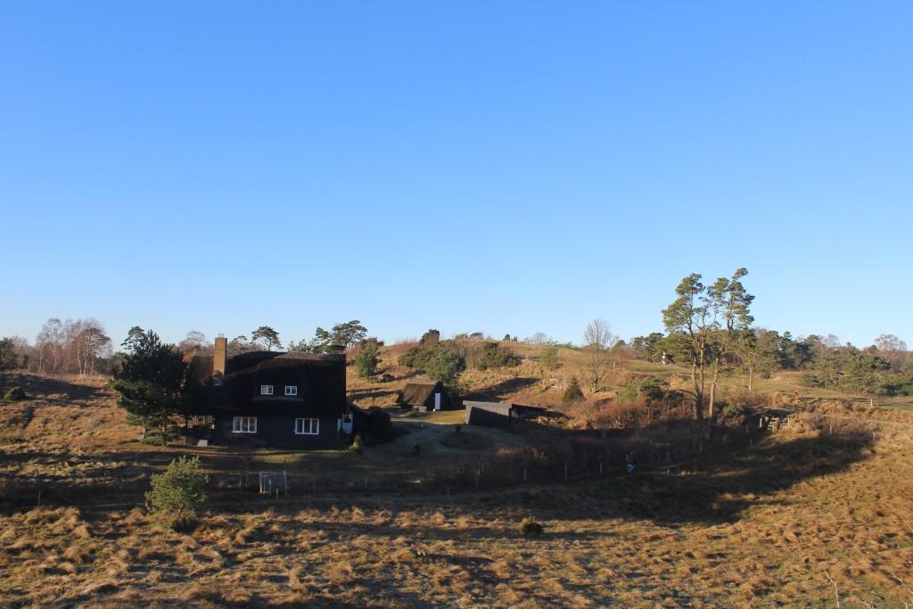 """Udsigt mod nord mod ca. 60 m høje morænebakke med toppunkt """"Udsugten"""". Foto den 7. januar 2018 af Eik K Abrahamsen."""