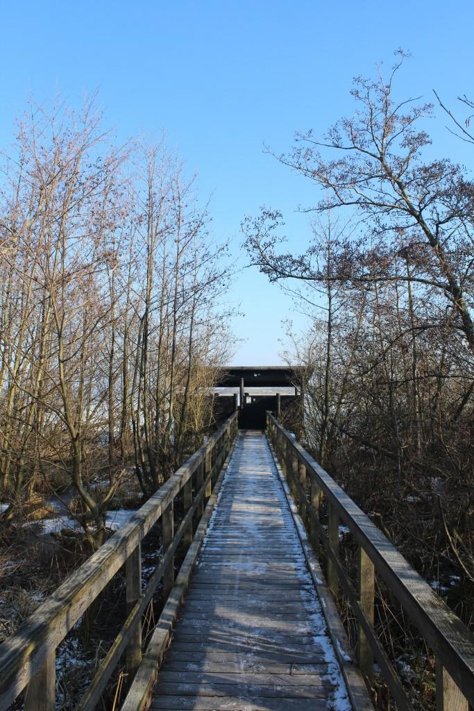 Walk bridge from sea shore through